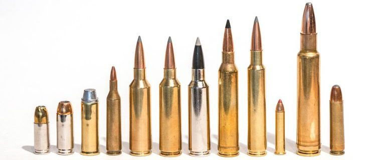 Guns List