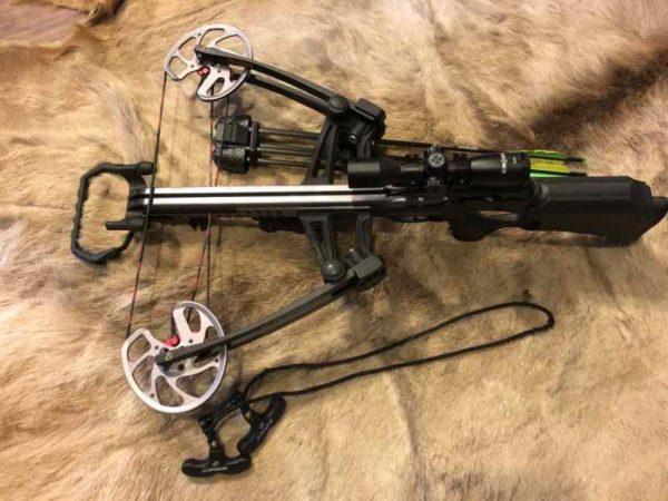 bissy 600x450 - Crossbow Barnett Vengeance